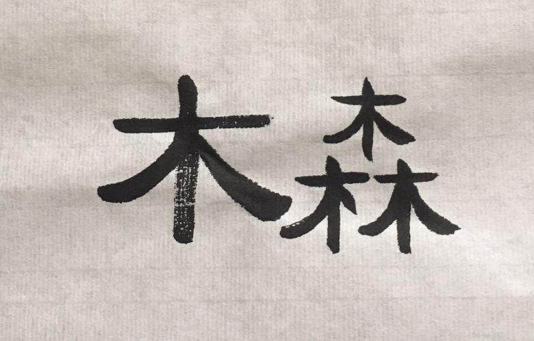MuSen Chinese