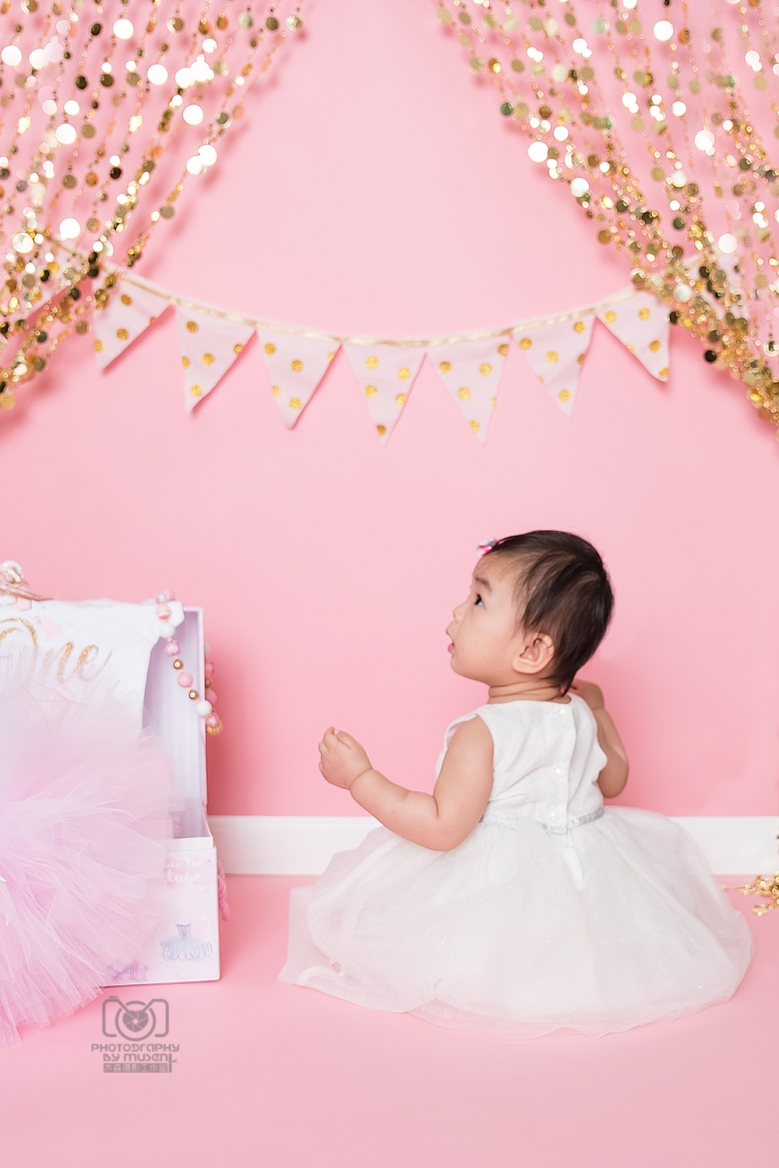 Princess Cake Smash (3)