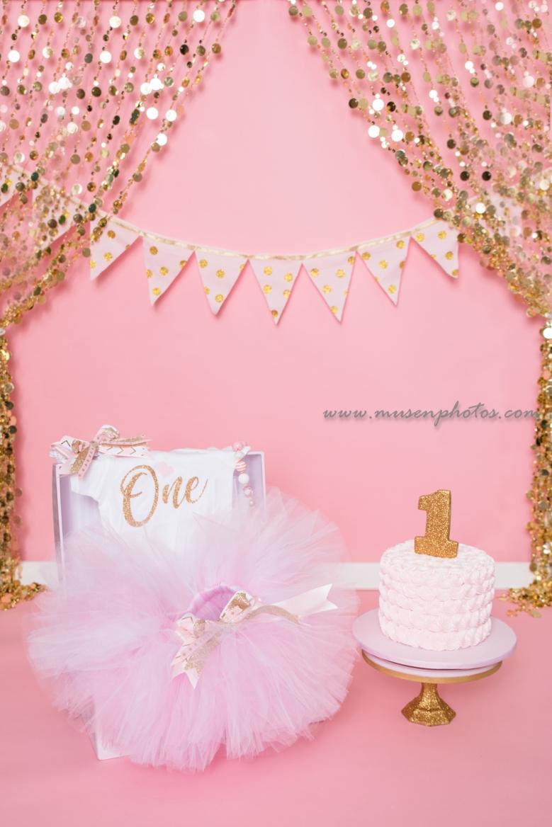 Princess Cake Smash (6)