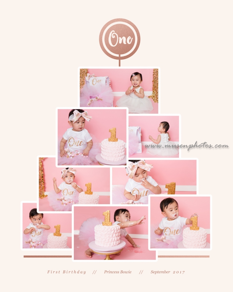 Princess Cake Smash Collage
