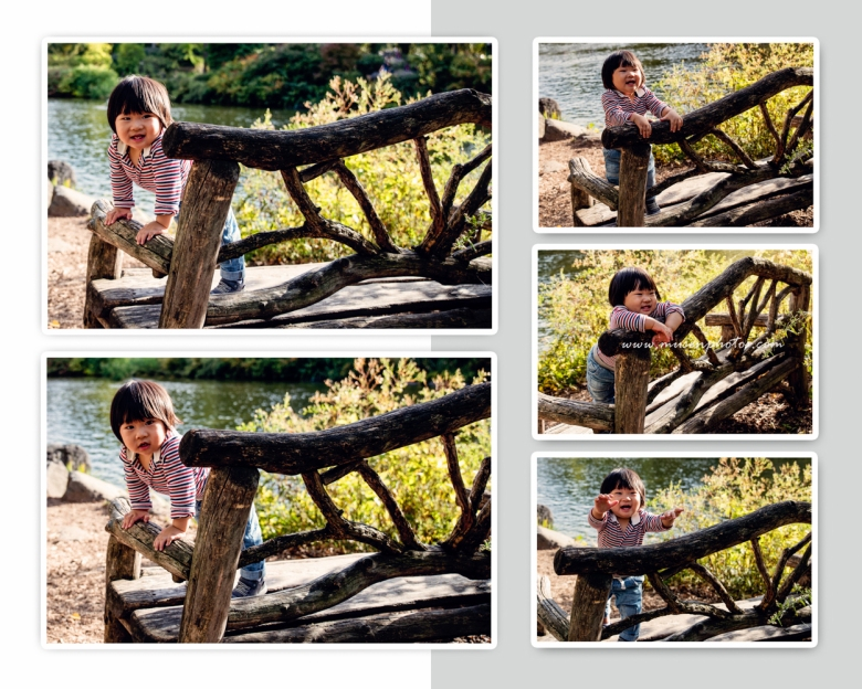 Mid Autumn Central Park (1)