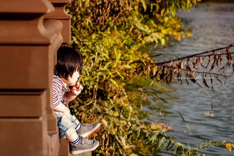 Mid Autumn Central Park (4)