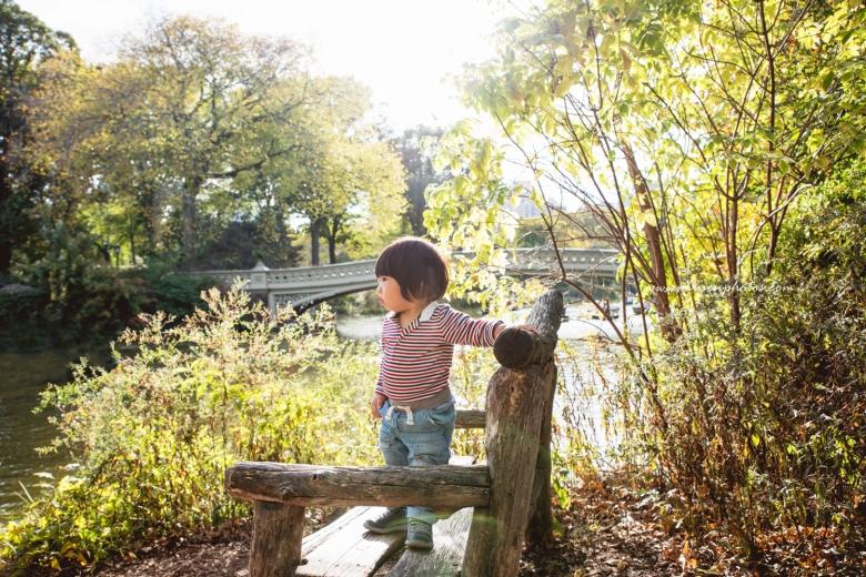 Mid Autumn Central Park (5)