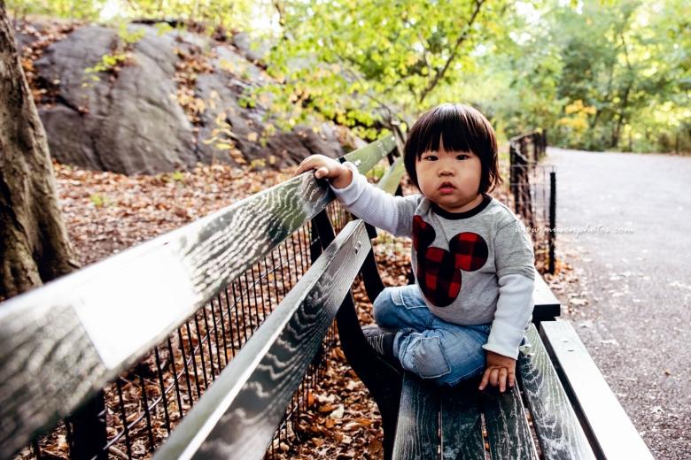 Mid Autumn Central Park (7)